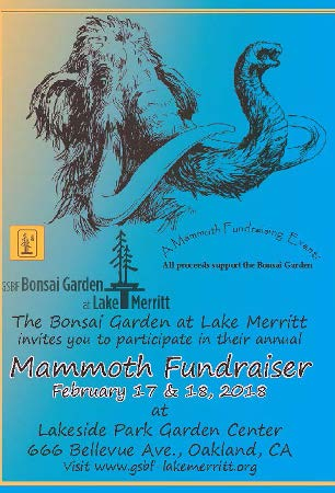 Bonsai Garden at Lake Merritt Annual Mammoth Auction & Sale